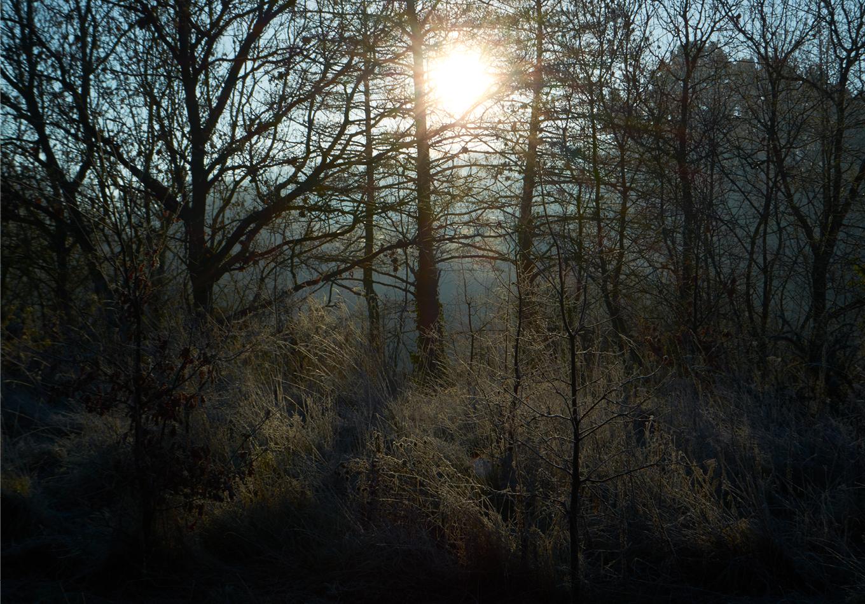 linda bujoli - Photographe - poétique de l'espace - Gaston Bachelard - nature - tableau pour rêver - paysage - photographie - rêve de nature - eau et les quatre éléments